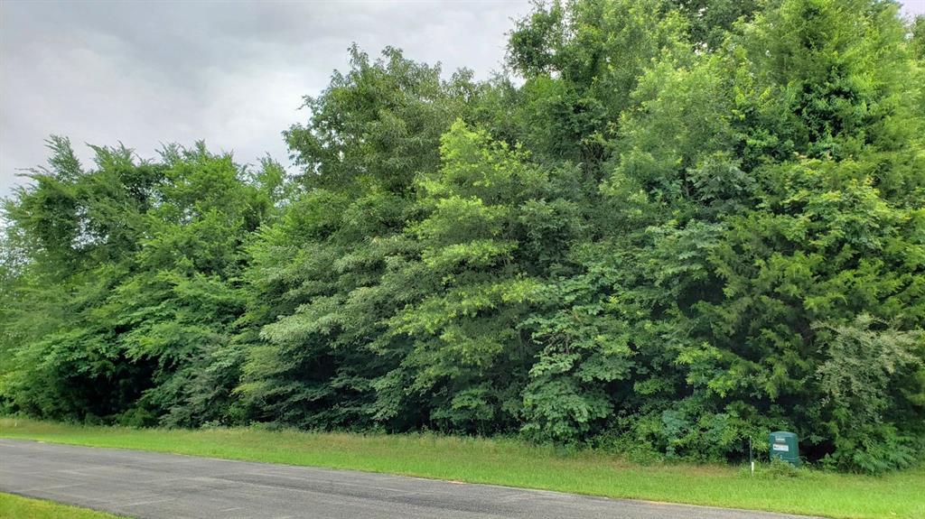 11619 Lazy Eight Trail Property Photo - Frankston, TX real estate listing