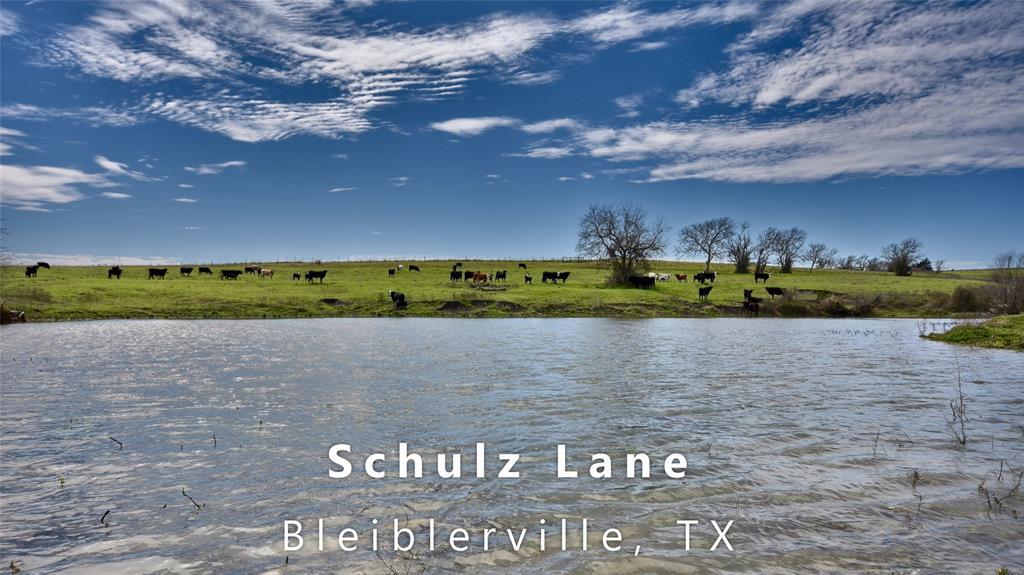 6921 Schulz Lane, Bleiblerville, TX 78931 - Bleiblerville, TX real estate listing