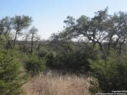 189 Morning View Property Photo - New Braunfels, TX real estate listing