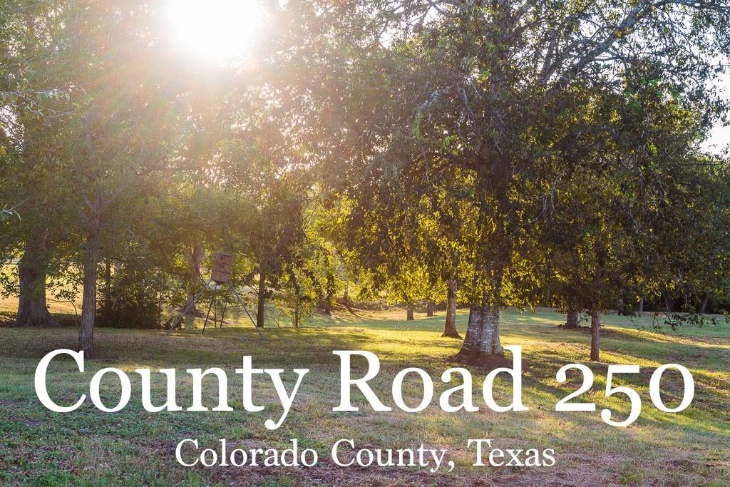 1532 County Road 250, Weimar, TX 78962 - Weimar, TX real estate listing