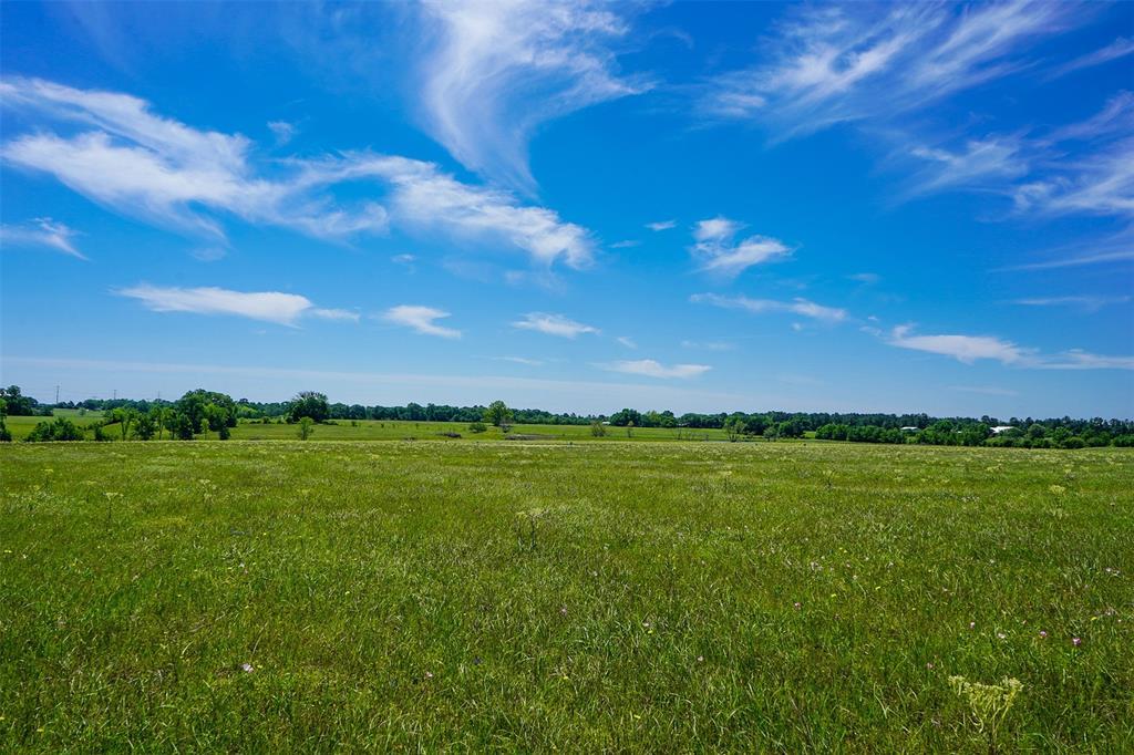 11 Anderson Ridge Lane, Anderson, TX 77830 - Anderson, TX real estate listing