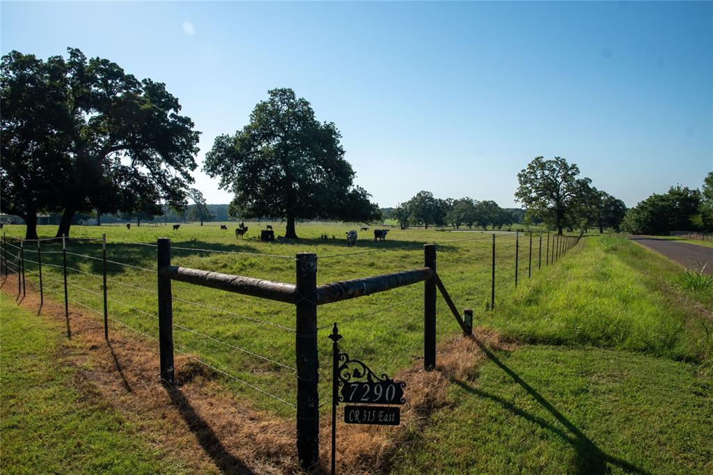 7290 E County Road 315 Property Photo - Buffalo, TX real estate listing