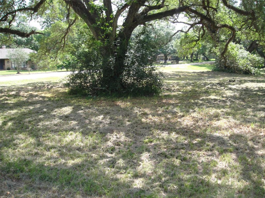 0 Paul Wayne, Boling, TX 77420 - Boling, TX real estate listing