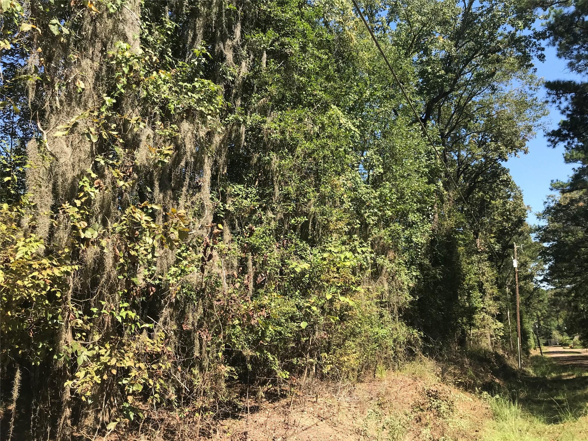 LTS 1-14 County Road 482 Property Photo - Etoile, TX real estate listing