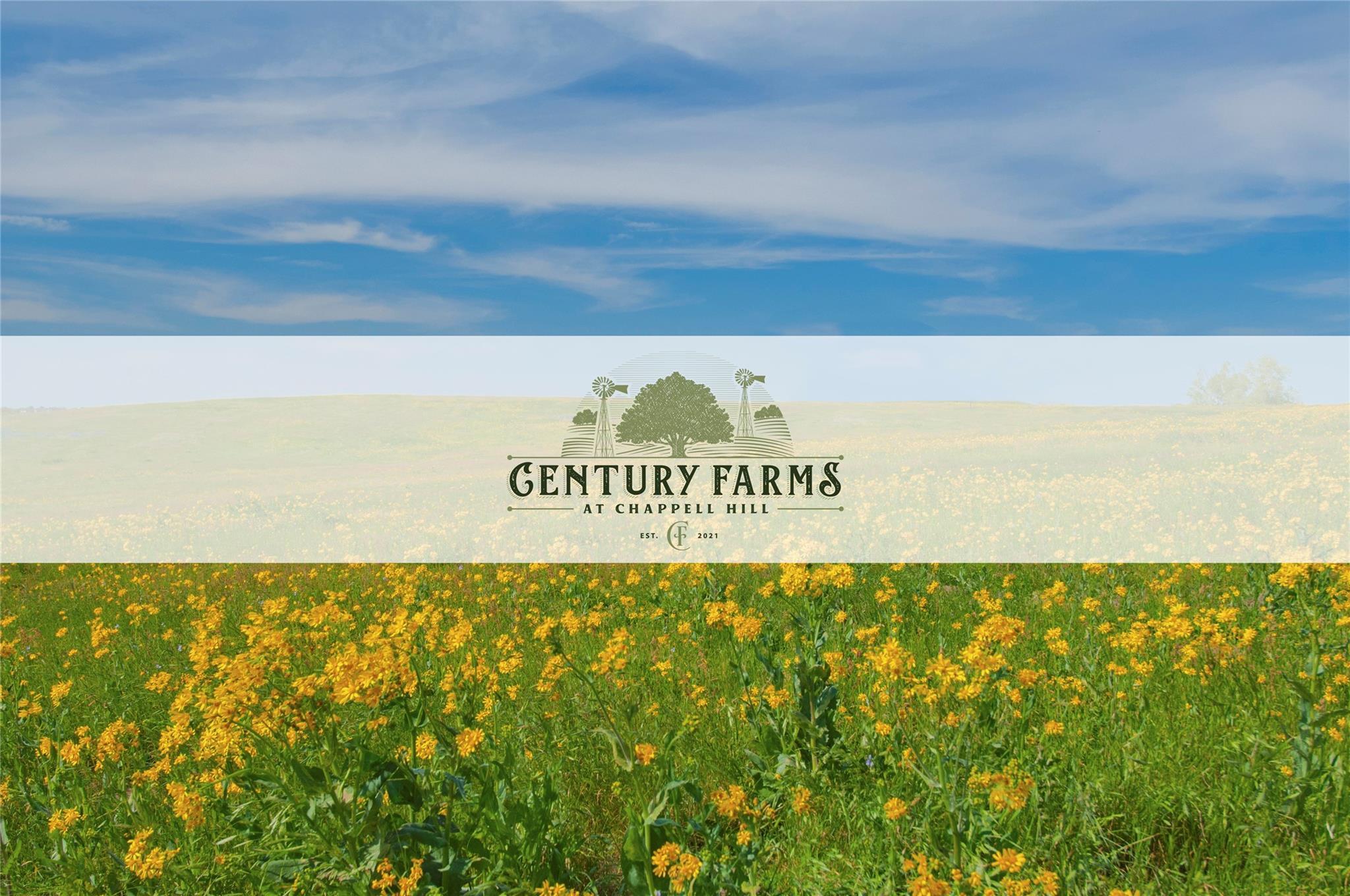 Lot 38 Century Farms Property Photo