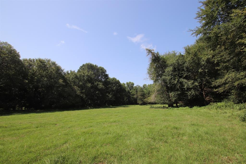 1199 Plum Road Property Photo - Gilmer, TX real estate listing