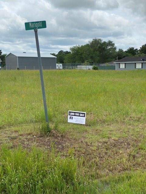 Lot 96 Alleda Road, Prairie View, TX 77446 - Prairie View, TX real estate listing