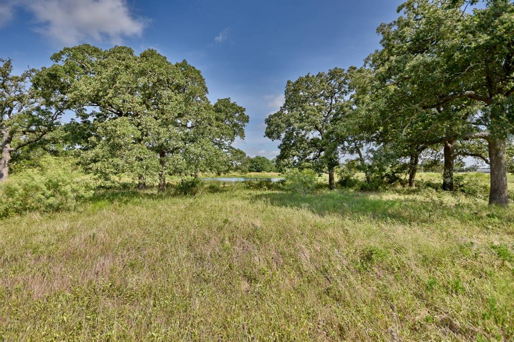 Tracts 2, 3, 4 & 8 Goehring Rd Property Photo - Ledbetter, TX real estate listing