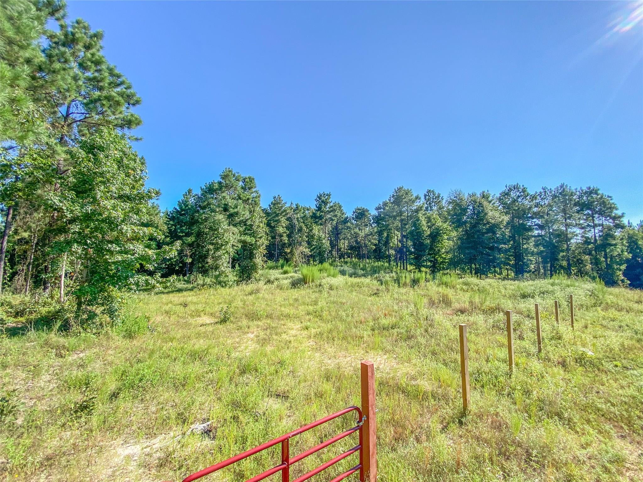 00 Off FM 330 Property Photo - San Augustine, TX real estate listing