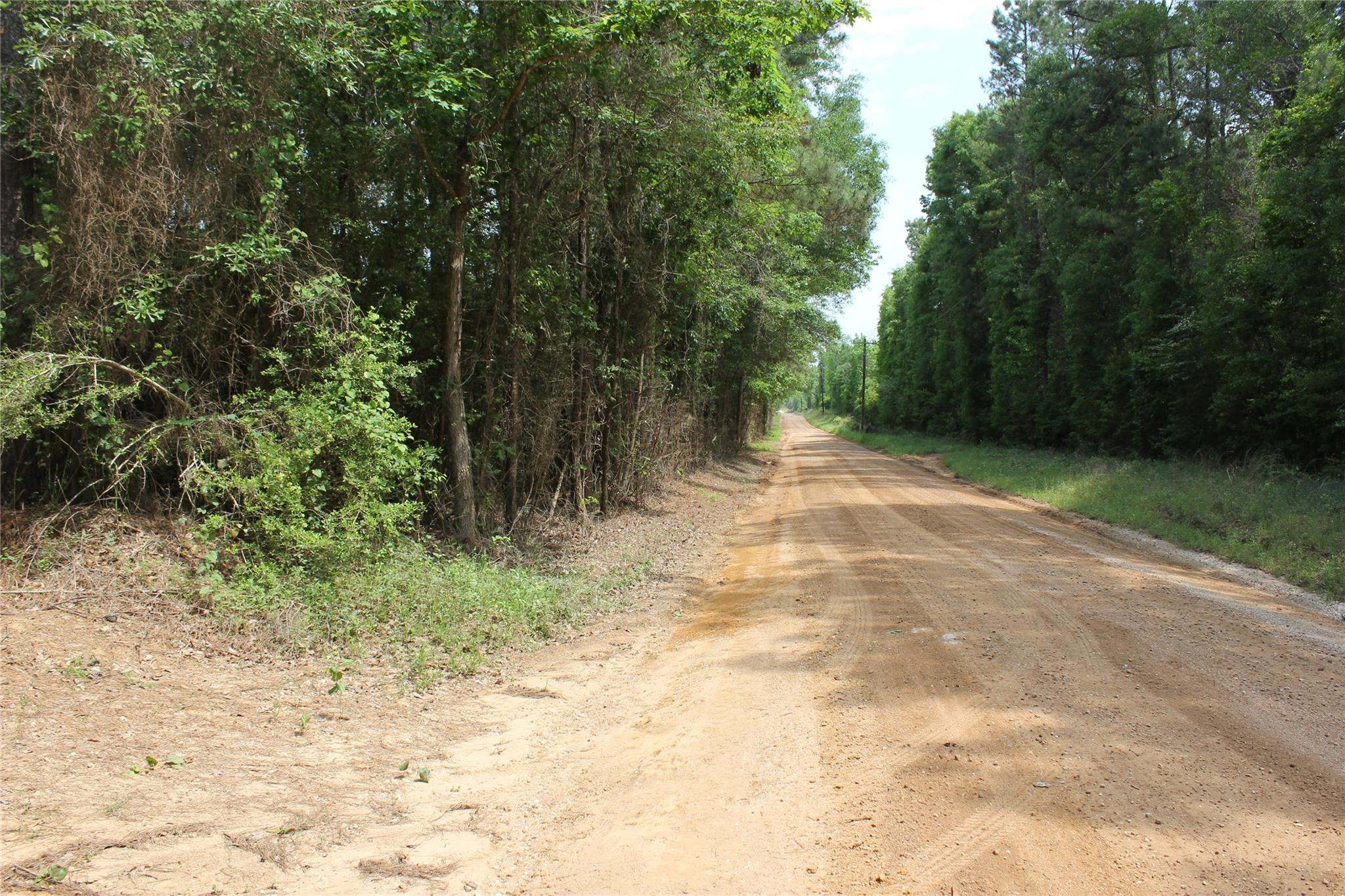 TBD 20A Holly Grove Rd Property Photo - Livingston, TX real estate listing