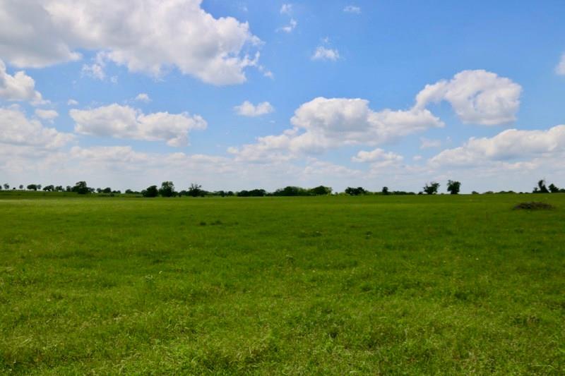 Lot 7 REAGANS WAY, Navasota, TX 77868 - Navasota, TX real estate listing