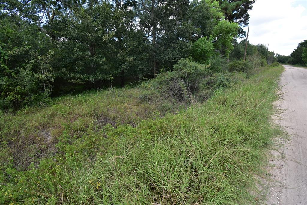 0 Eagle Drive Property Photo - Clemville, TX real estate listing