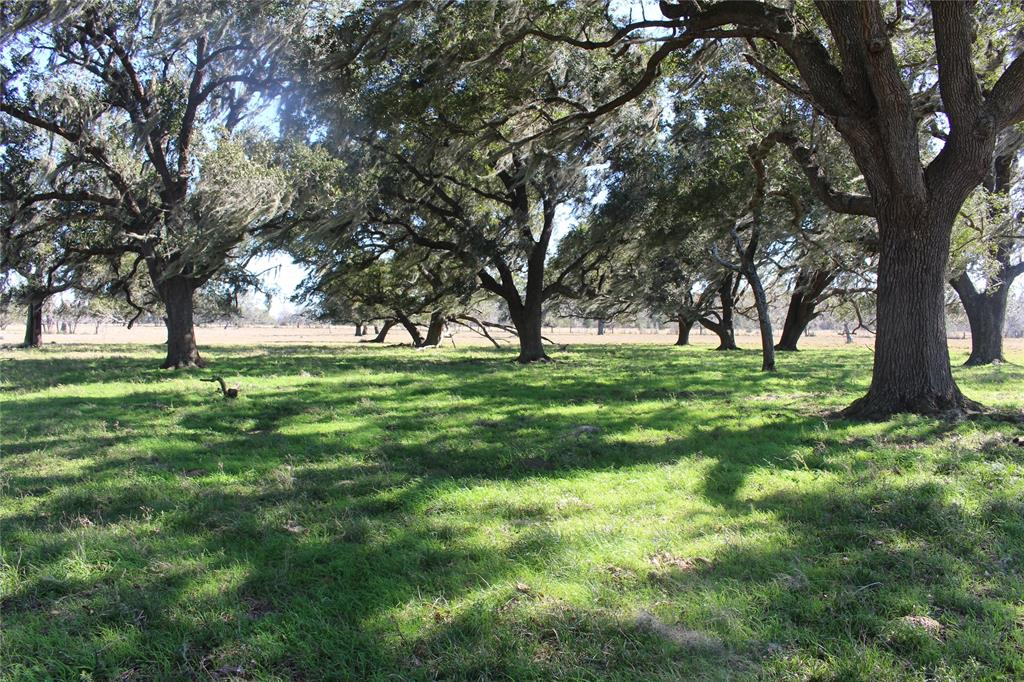 4945 East Rhodes School Road Property Photo - Damon, TX real estate listing