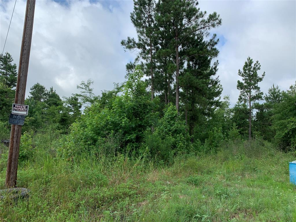 TBD E Darden, Tract 68 Road, Chester, TX 75936 - Chester, TX real estate listing