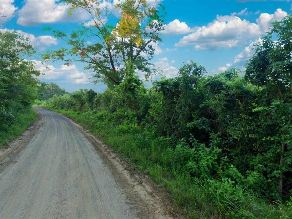 TBD County Rd 4096, Kirbyville, TX 75956 - Kirbyville, TX real estate listing