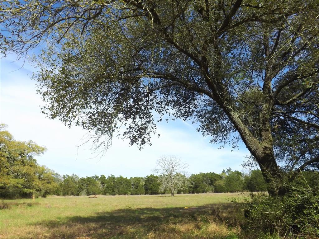 1297 Frelsburg Road Property Photo - Alleyton, TX real estate listing
