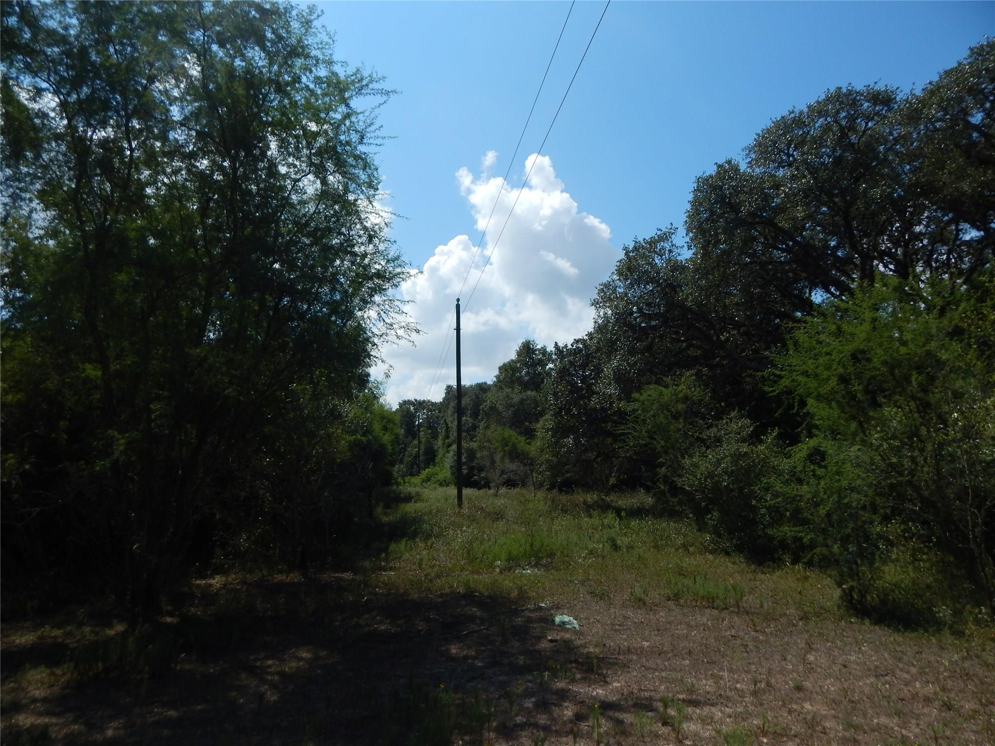 1736 County Road 16 Property Photo - Garwood, TX real estate listing