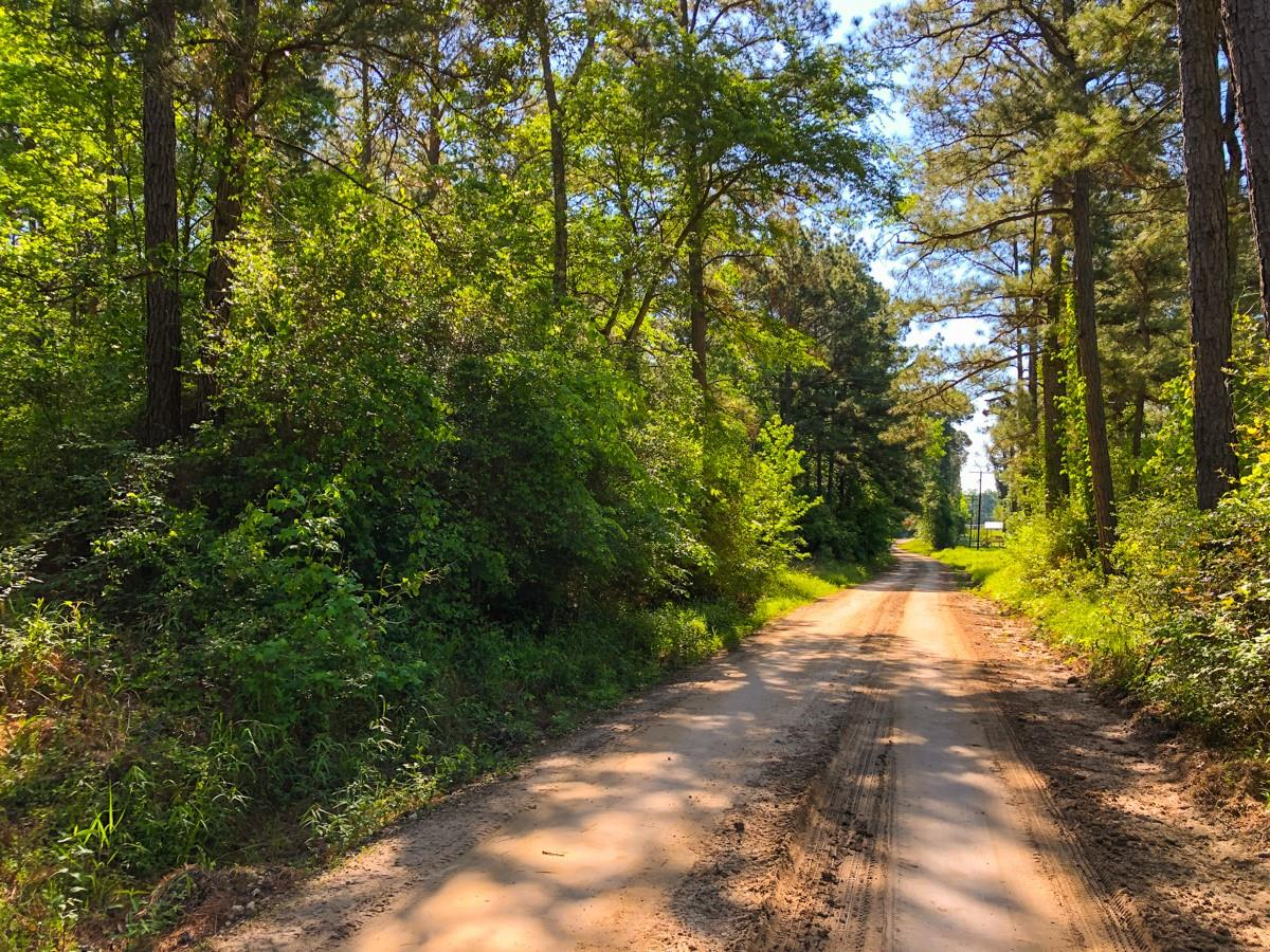 0 S of Hwy 94 Property Photo - Trinity, TX real estate listing