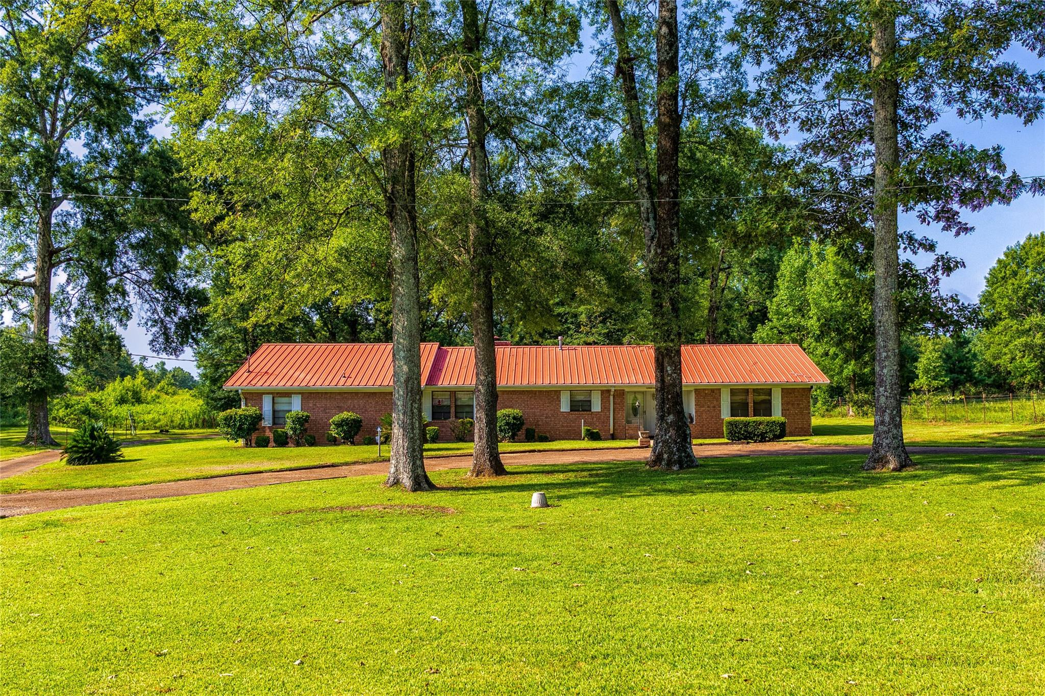 236 County Rd 118 E Property Photo - San Augustine, TX real estate listing