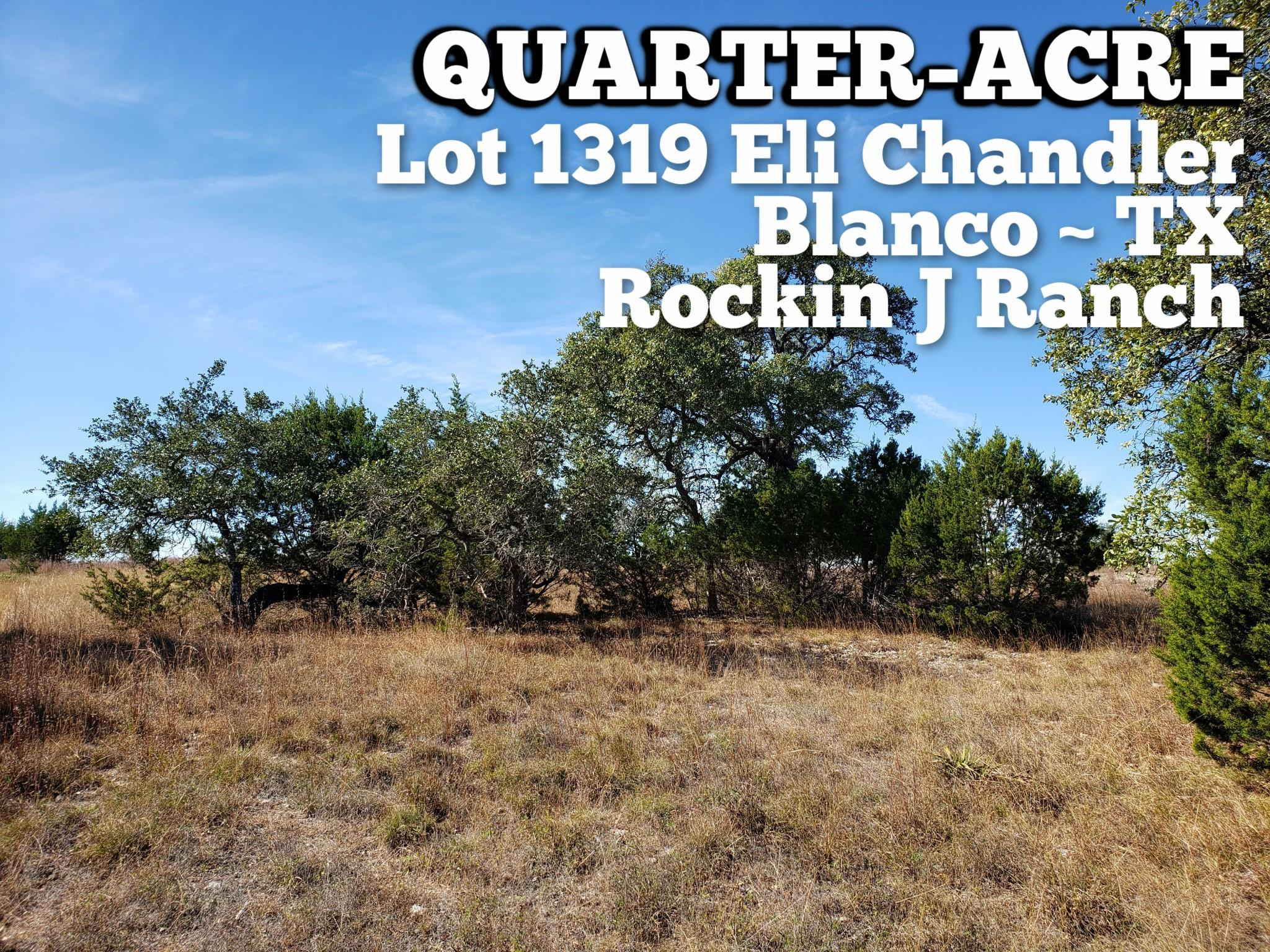 Lot 1319 Eli Chandler Property Photo - Blanco, TX real estate listing