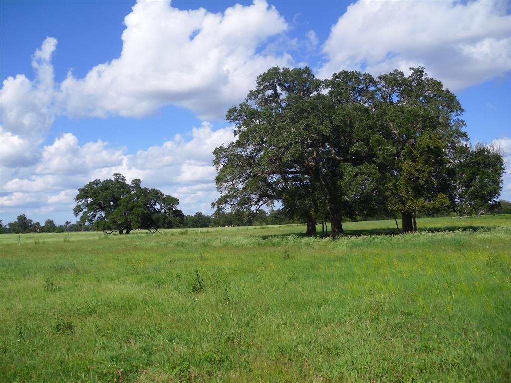 11.6ac CR 164, Boling, TX 77420 - Boling, TX real estate listing