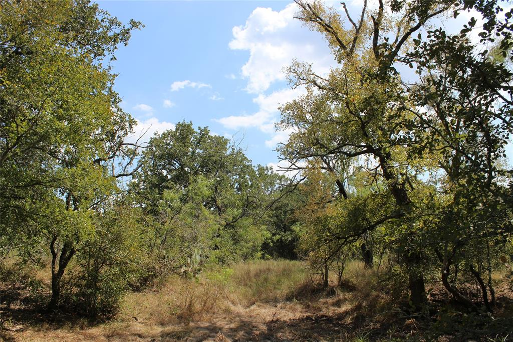 4272 FM 2814 Property Photo - Waelder, TX real estate listing