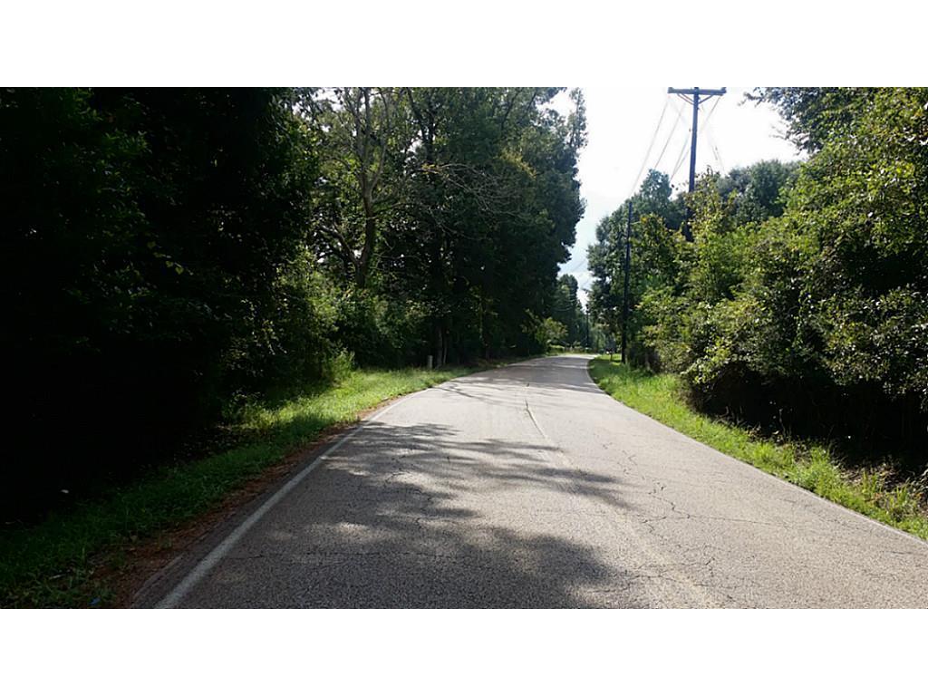 TBD Lot 1 Firetower Property Photo - Conroe, TX real estate listing