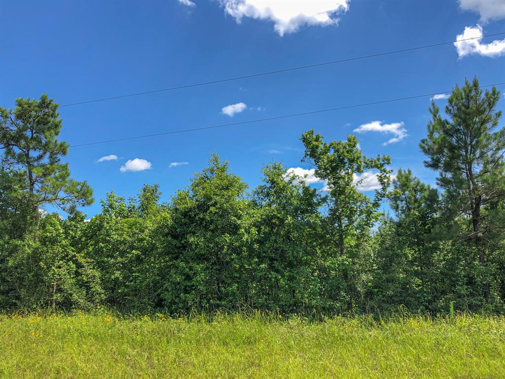 0 Joe Lyn Road, Chester, TX 75936 - Chester, TX real estate listing