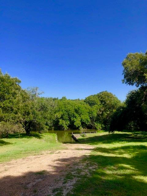 226 River Tree Drive Property Photo - Blessing, TX real estate listing