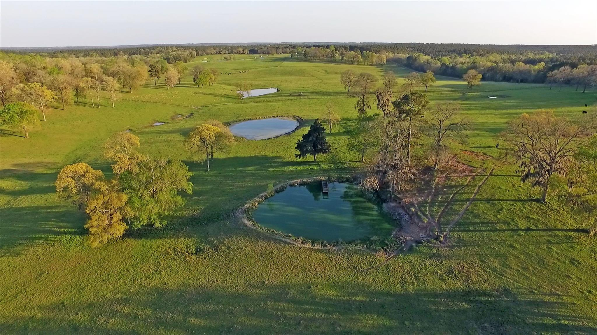 4300 US Highway 190 W Property Photo - Point Blank, TX real estate listing