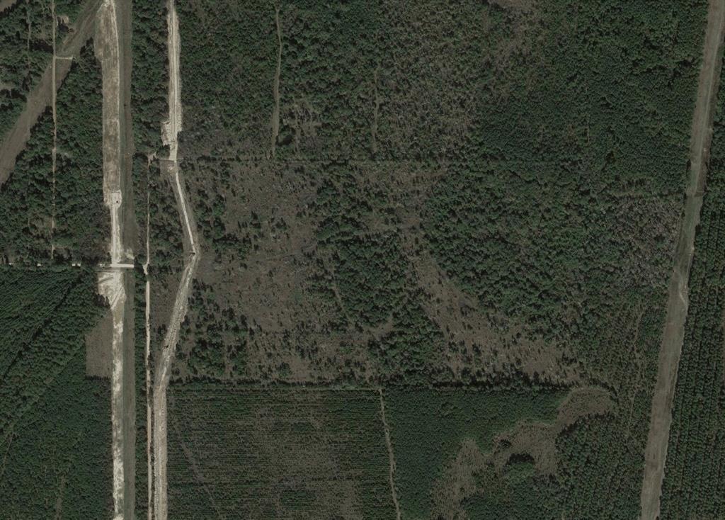 0 Pelican Road Property Photo - Shepherd, TX real estate listing