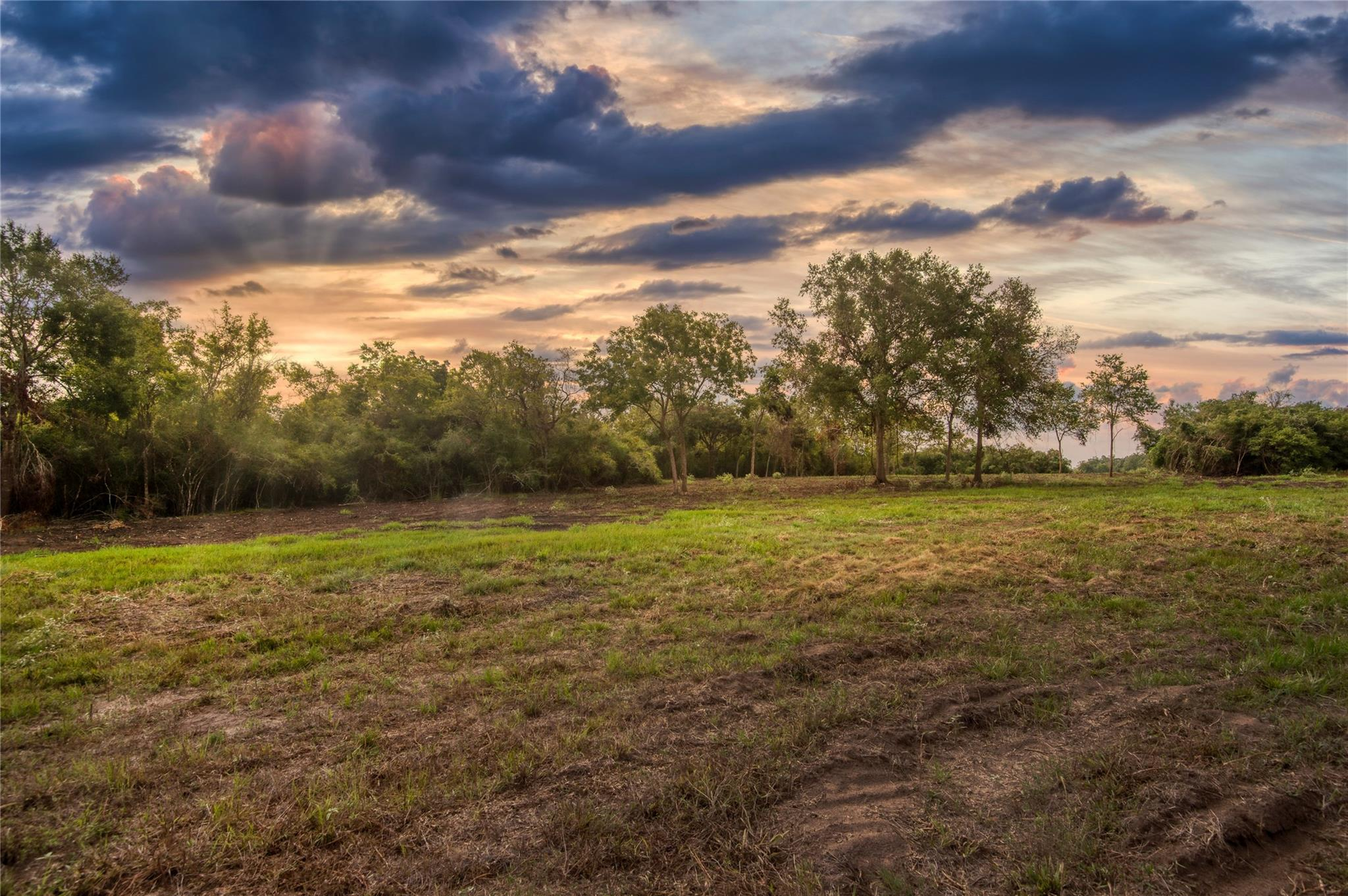 2911 Woodland Ranch Lane Property Photo - Chappell Hill, TX real estate listing