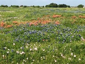 842 Frank Vacek Lane, Schulenburg, TX 78956 - Schulenburg, TX real estate listing