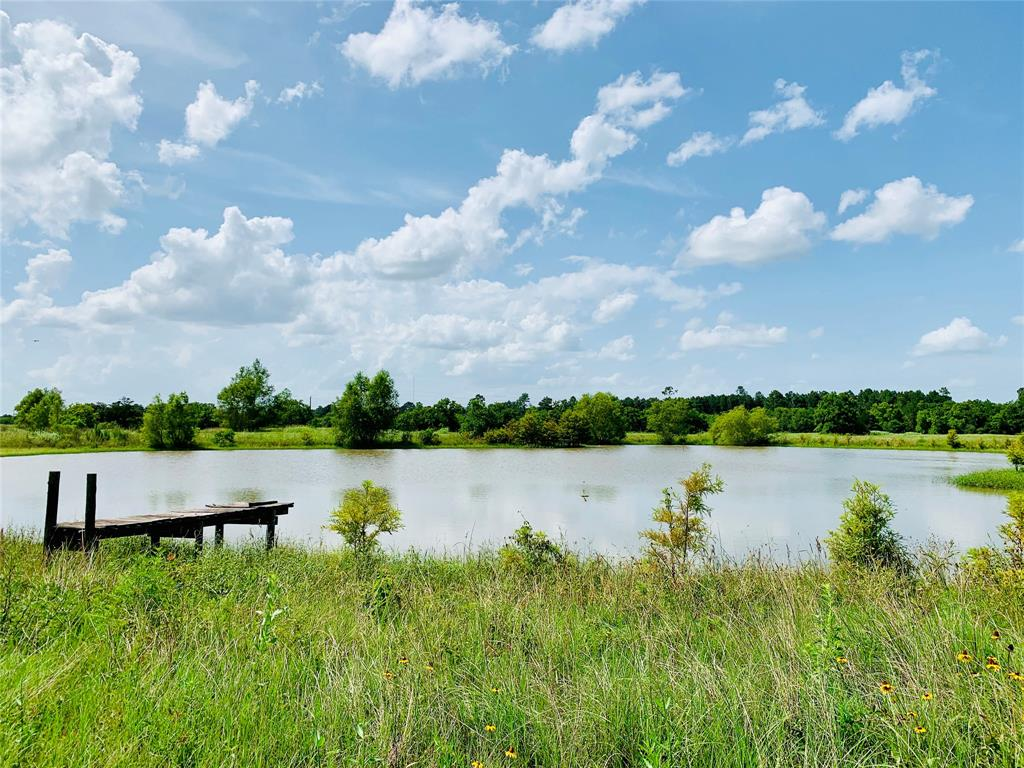 9137 Kloss Road, Cat Spring, TX 78933 - Cat Spring, TX real estate listing