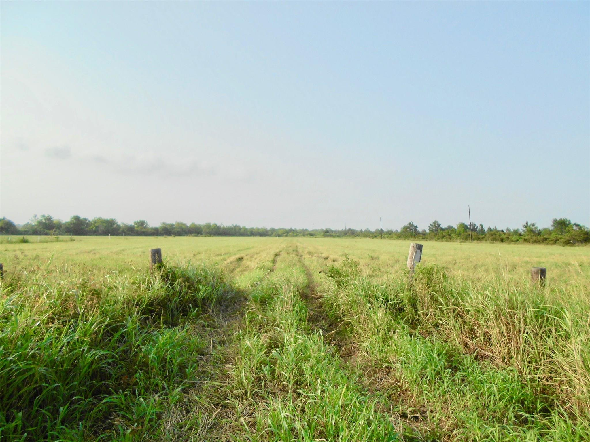 861 Fm 1410 Road Property Photo - Devers, TX real estate listing