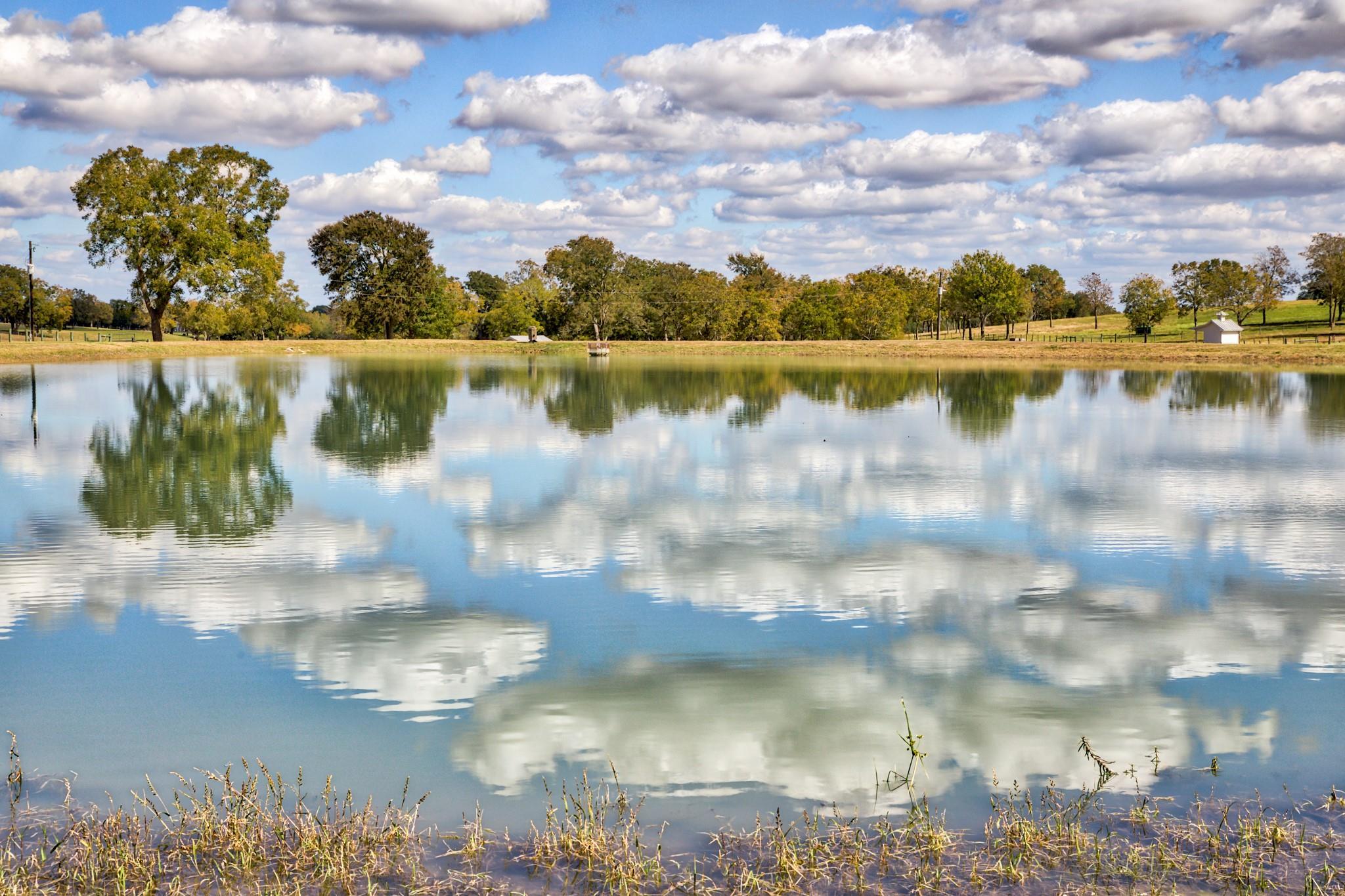 Tract A Fm 2447 E Property Photo
