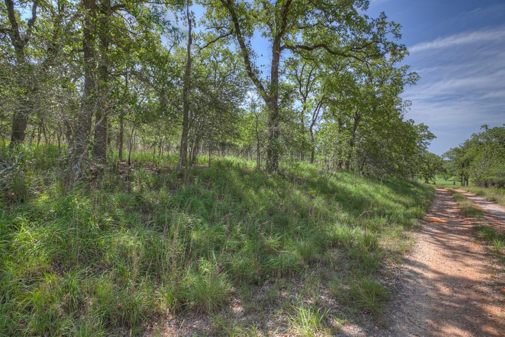 1221 Shawnee Lane Property Photo - Kingsbury, TX real estate listing