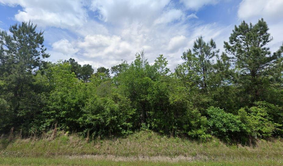 7811 Highway 90 Property Photo - Crosby, TX real estate listing