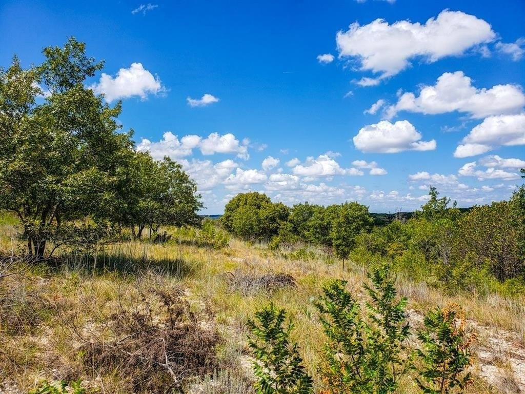 1665 Overlook Ridge Property Photo - Bluff Dale, TX real estate listing