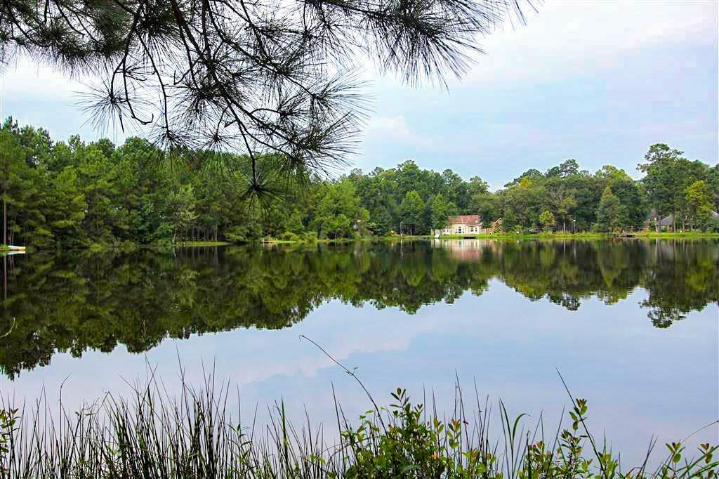 70 Artesian Way, Roman Forest, TX 77357 - Roman Forest, TX real estate listing