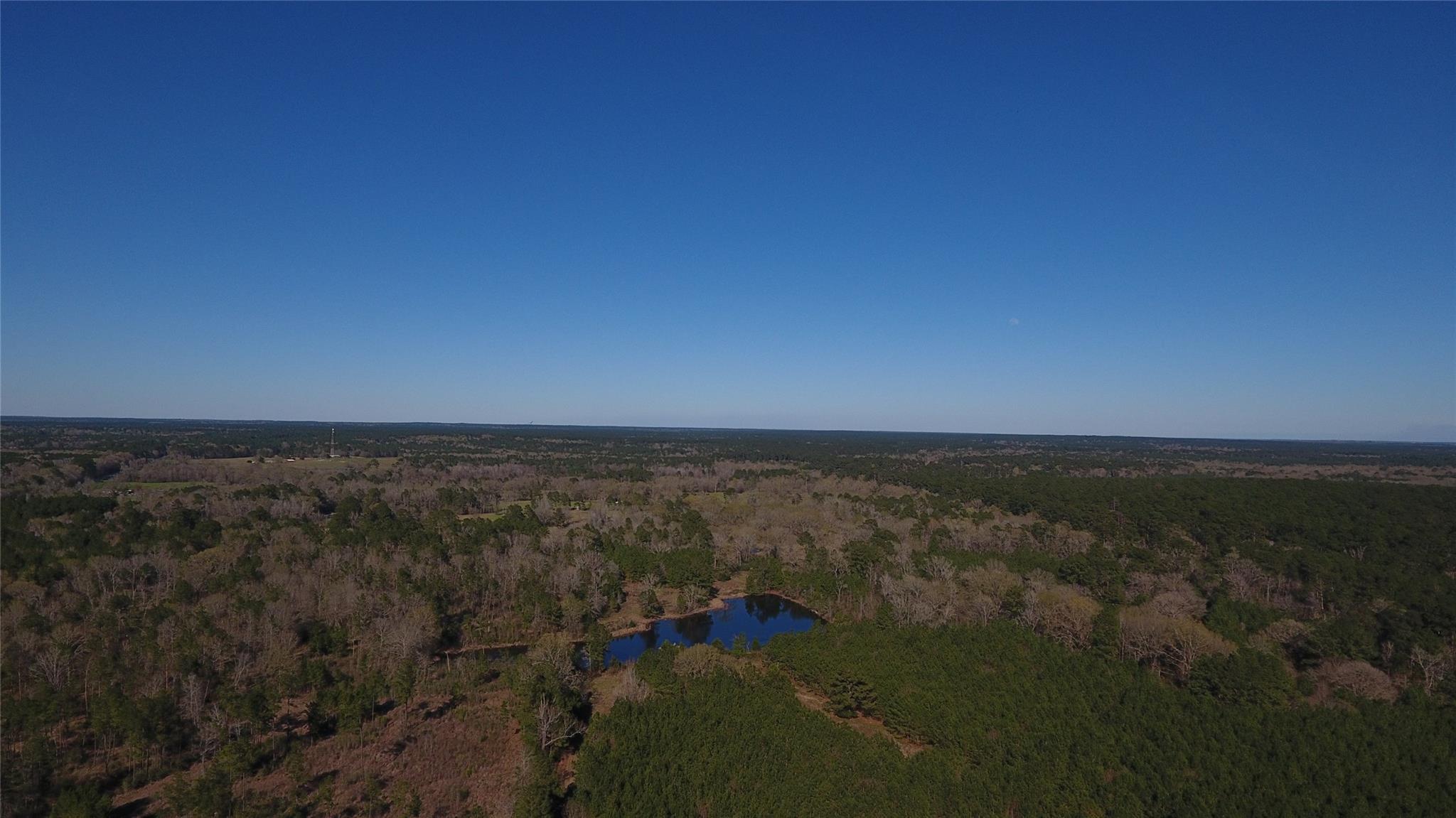2962 Hwy 94 Property Photo - Groveton, TX real estate listing
