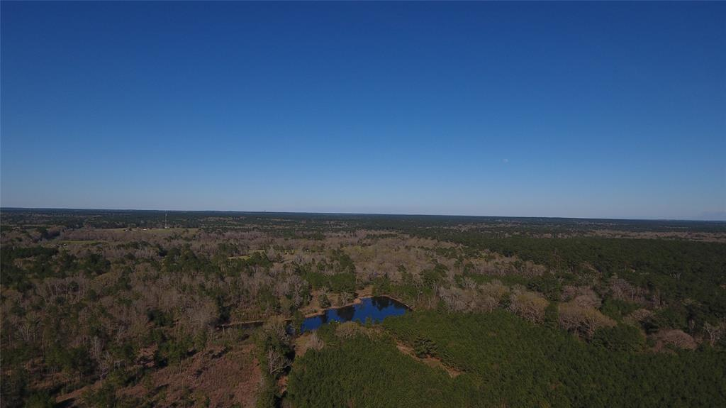 2962 Hwy 94 Property Photo - Groveton, TX real estate listing