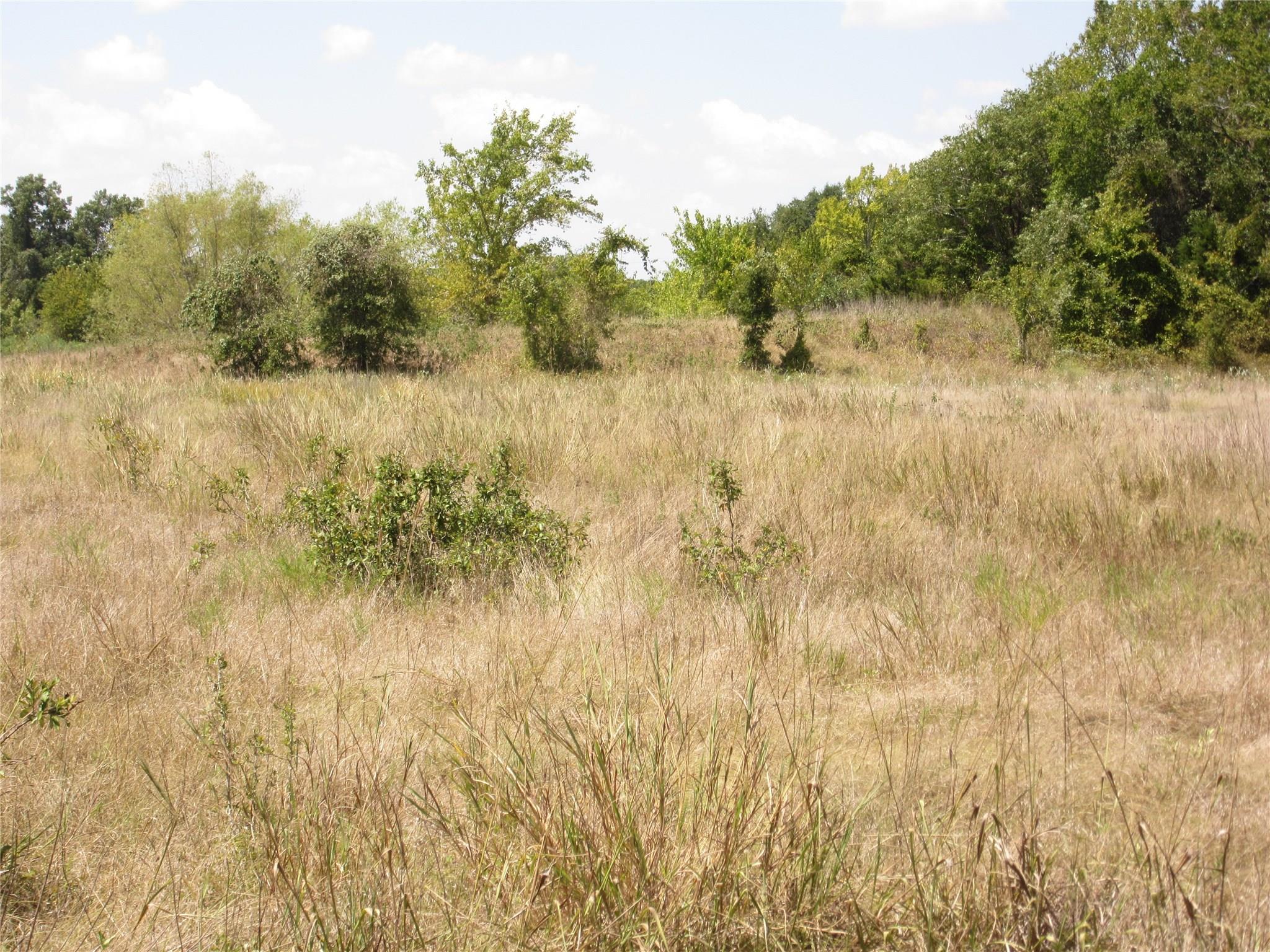 0000 FM 1291 Property Photo - Fayetteville, TX real estate listing