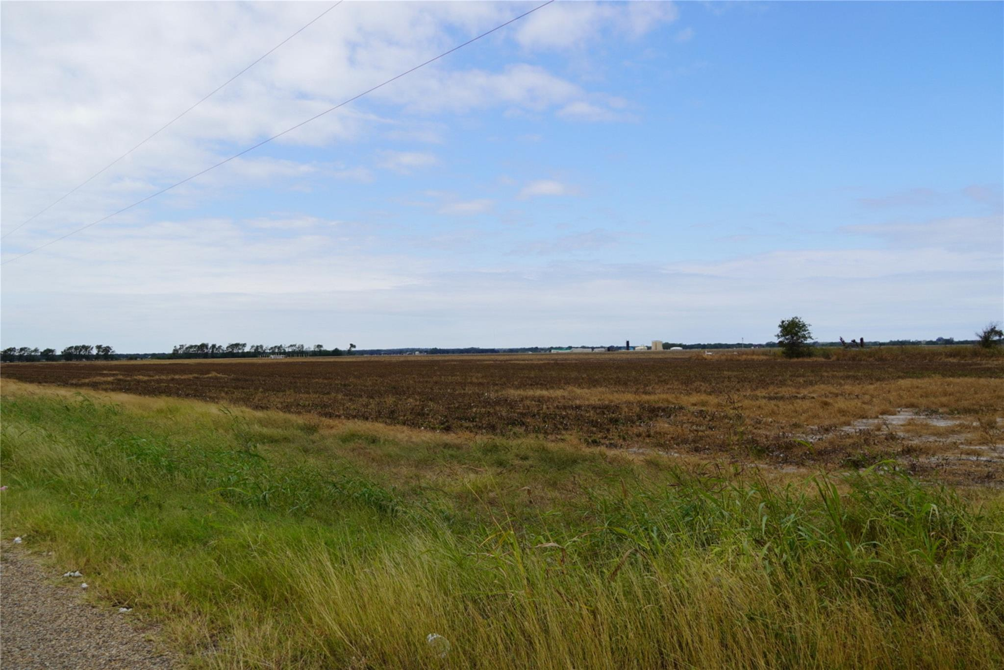 Tbd County Road 272 Property Photo