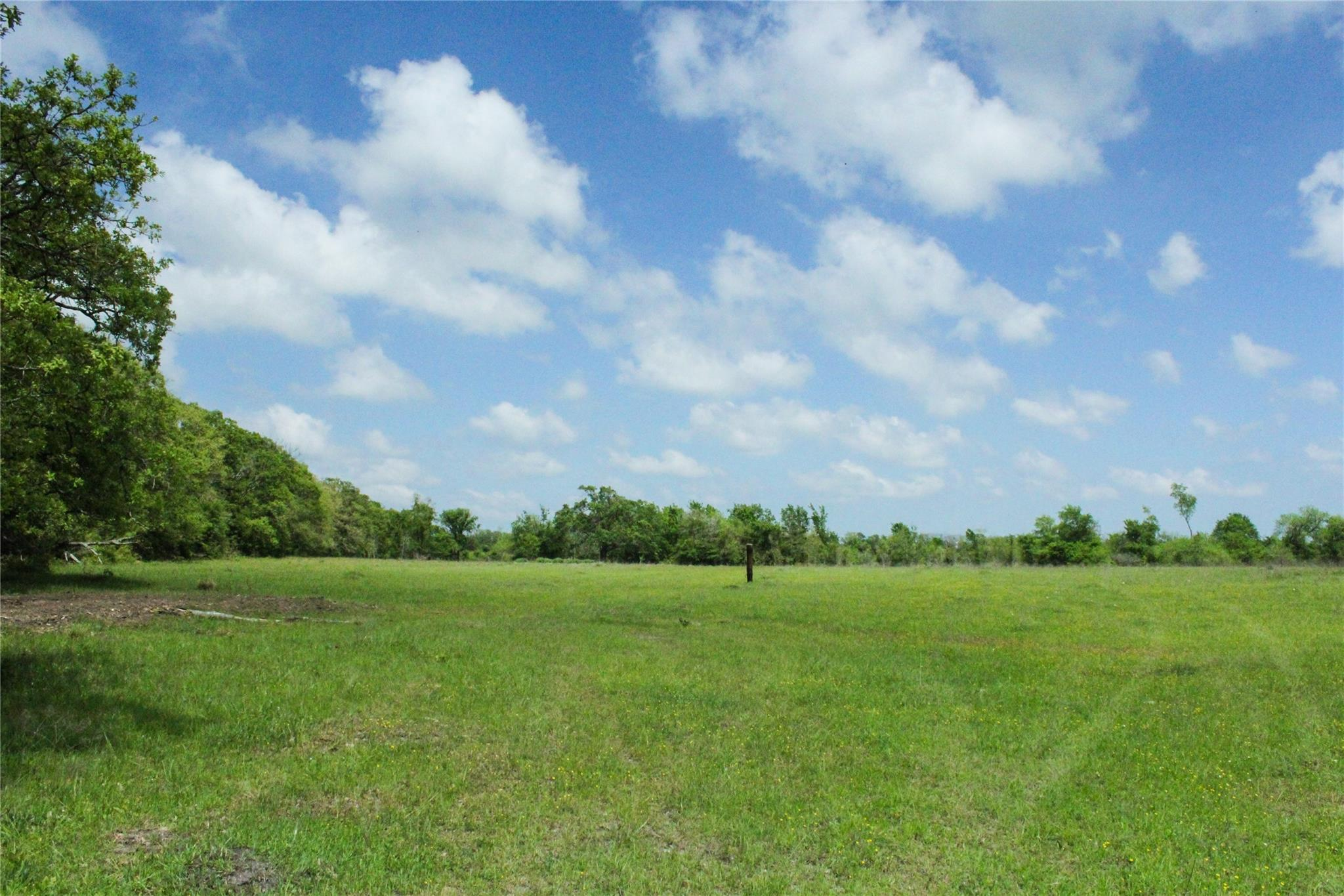 0030 County Road 229 Property Photo - Bedias, TX real estate listing
