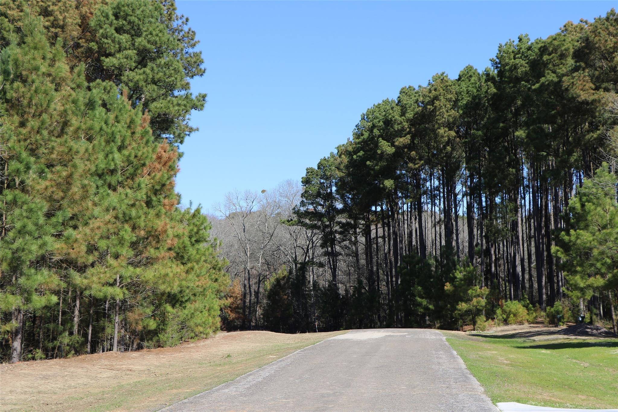 Lot 189 Trophy Pointe Property Photo - Larue, TX real estate listing