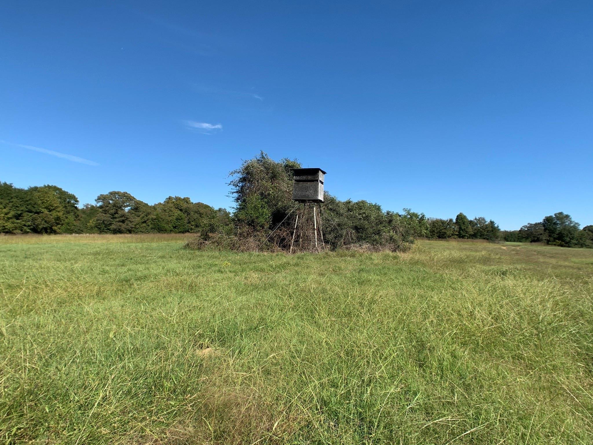 TBD Lot 3 HWY 75 S Property Photo - Buffalo, TX real estate listing