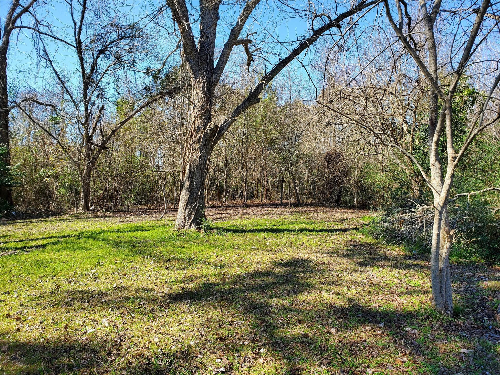 1704 N Cleveland Street Property Photo - Dayton, TX real estate listing