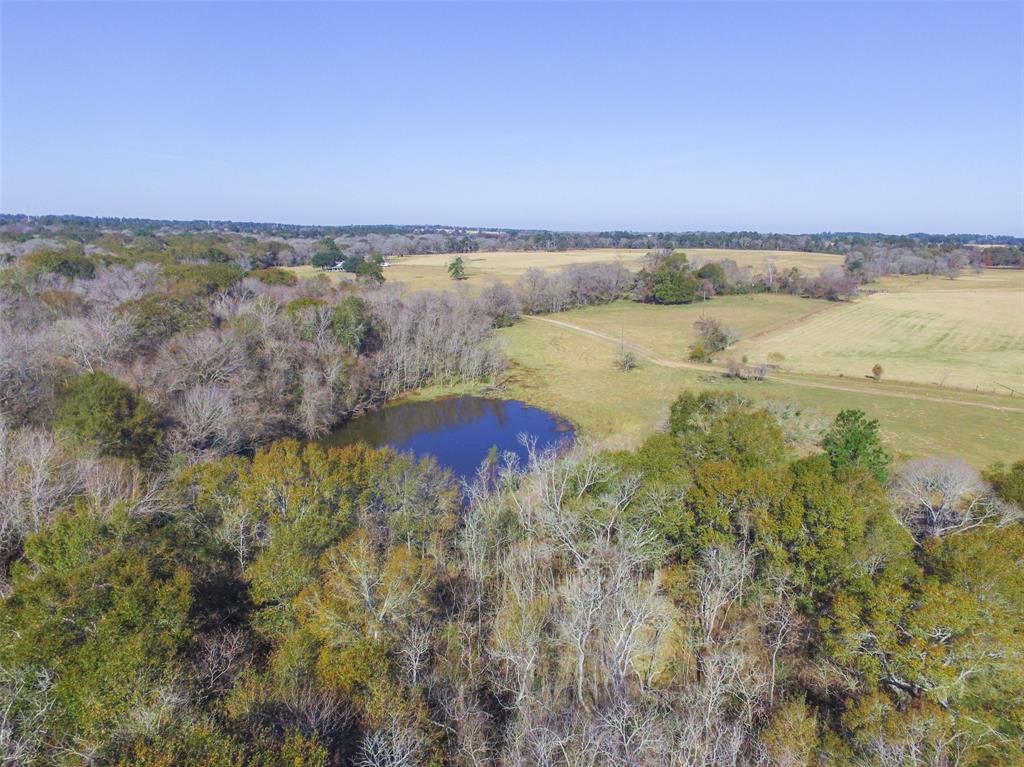 0 FM 220, Plantersville, TX 77363 - Plantersville, TX real estate listing