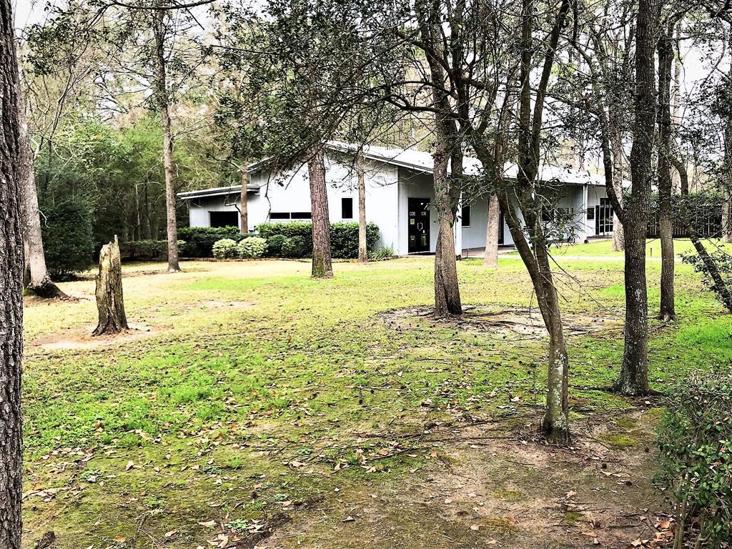 32310 Tamina Road, Magnolia, TX 77354 - Magnolia, TX real estate listing